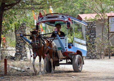horseandcarrigeGili