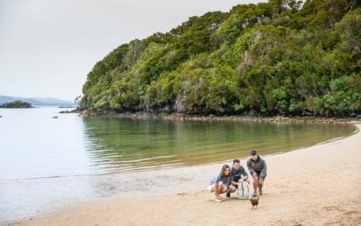 Stewart Island Discovery Expedition Cruise