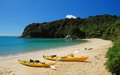 Wilson's Abel Tasman Guided Walk & Kayak Combo