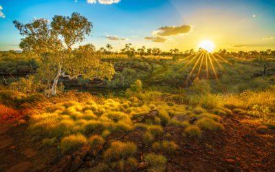 Ningaloo Reef & Pilbara Adventure with Intrepid $1 Deposit 2022 Tours