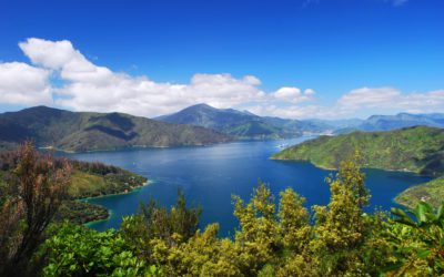 Walk the Queen Charlotte Track with Intrepid $1 deposit